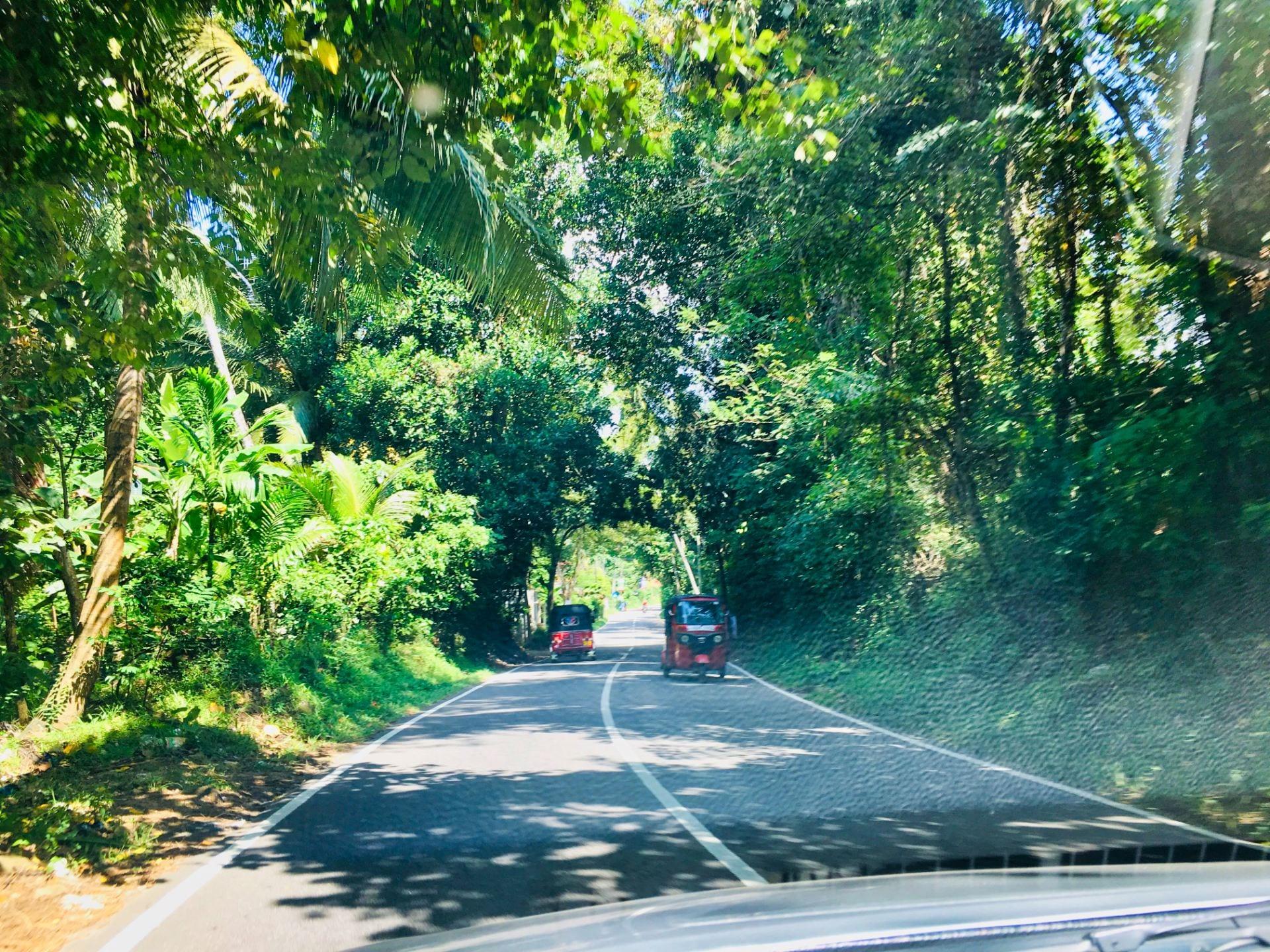 Sri Lankan Highway